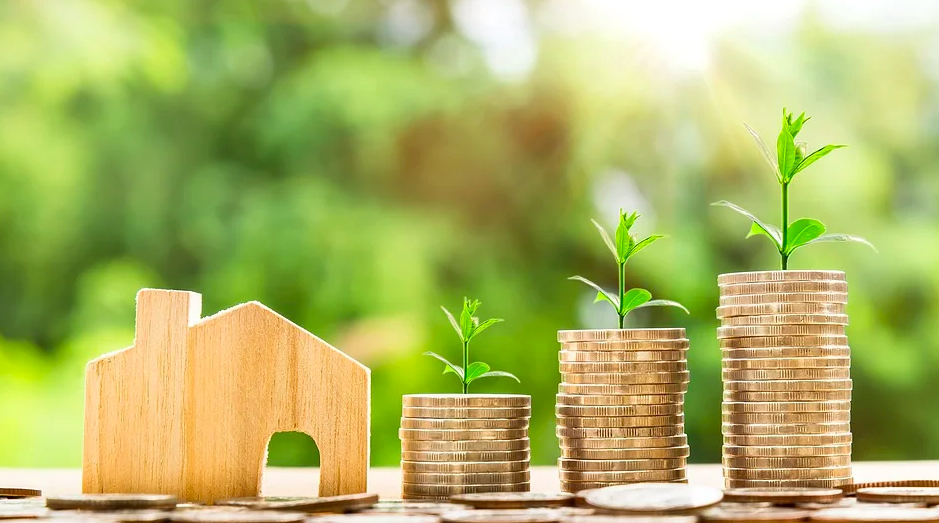 Что такое семейная экономика – основные определения