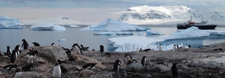 Рельеф Антарктиды кратко