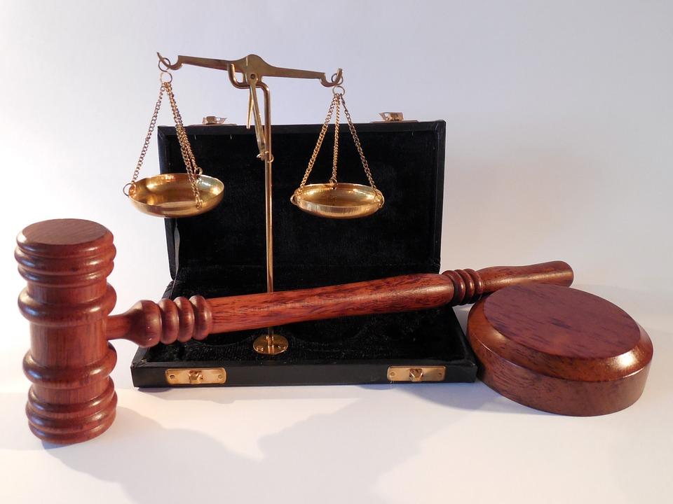 Какой из источников права является результатом правотворчества