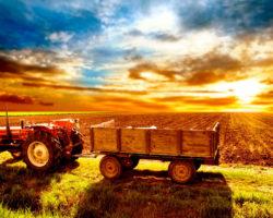 Финансирование сельскохозяйственной деятельности