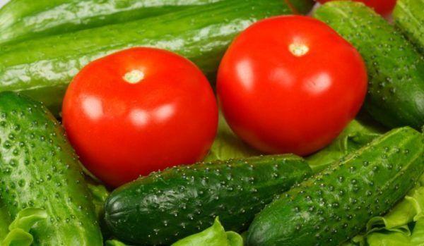 Удобрение для огурцов и помидоров
