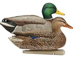 Чучела уток Avian-X Mallard Floater