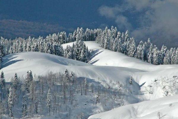 Красняа Поляна зимой