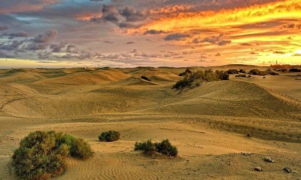 Пейзажи дюн
