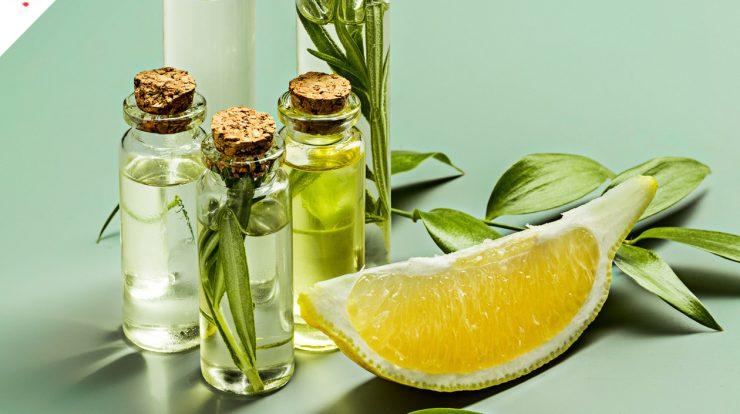 Синтетические, натуральные антиоксиданты для кожи лица – зачем нужны, где искать
