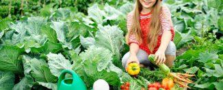 Советы по воспитанию детей: как привлечь ребёнка на помощь в огороде