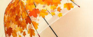 Женский зонт: как правильно выбрать зонтик