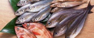 Памятка покупателю: качественная и безопасная рыба, советы
