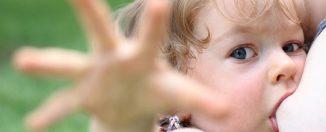 Грудь и соски, как отлучить ребёнка