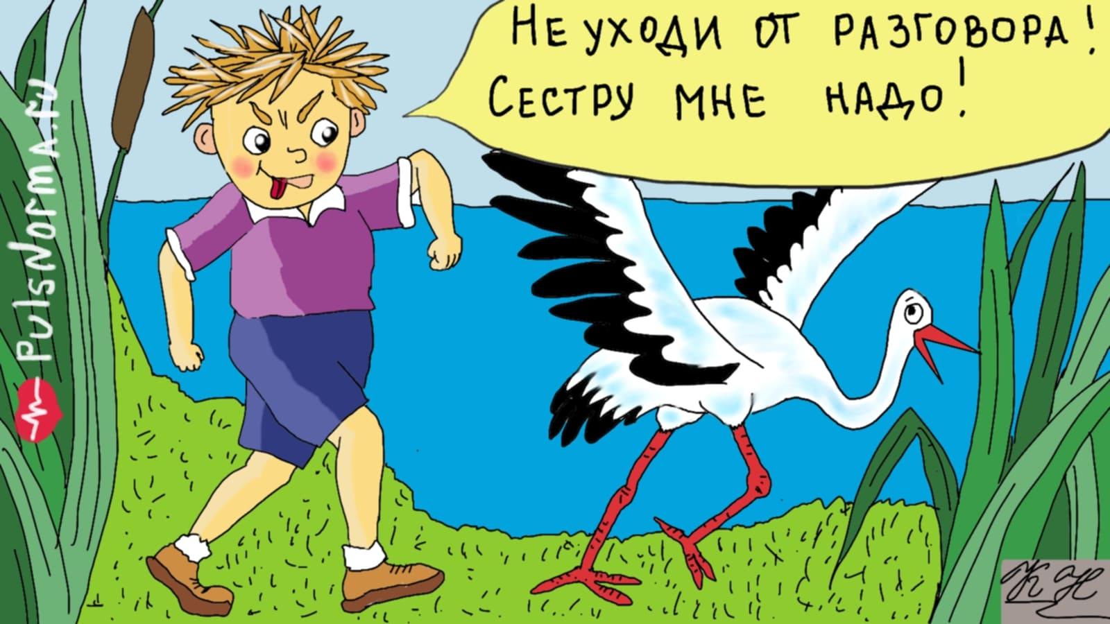 Карикатура Пульс Норма: ребенок гонит цаплю