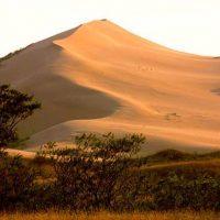 Сары-Кум – огромный песчаный бархан в Махачкале