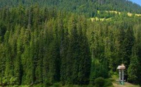 Отдых в Закарпатье: основные преимущества